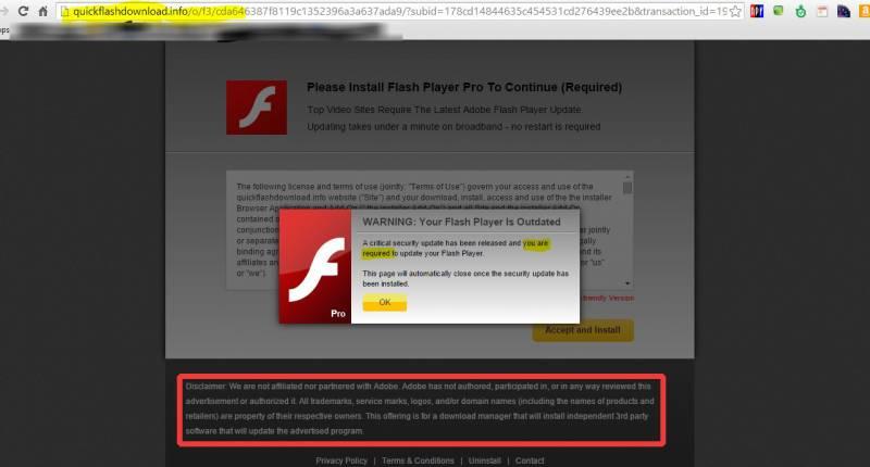 fake flash update warning